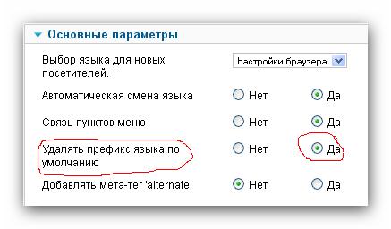 """Выставляем """"Удалять префикс языка по цмолчанию"""" - для удаления кода из ссылки"""
